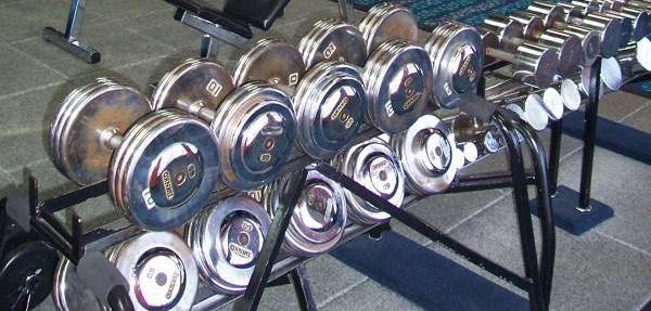 Free Weights Bar Bells
