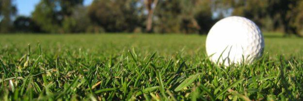 Golf Grass Banner