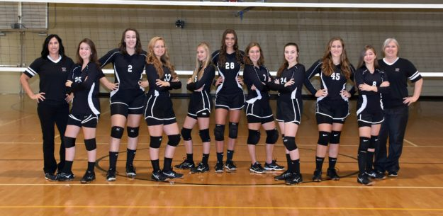 2017 TN Heat Volleyball - High School Team