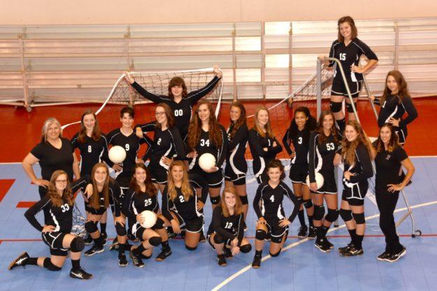 2016 High School Volleyball Team